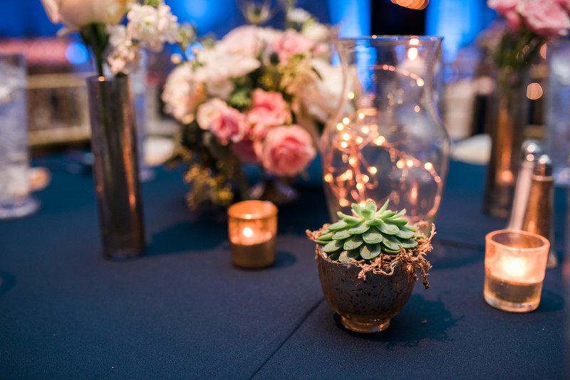wedding2202811020of2019229-l